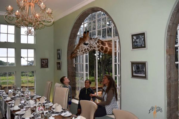 Giraffe Manor Breakfast WM