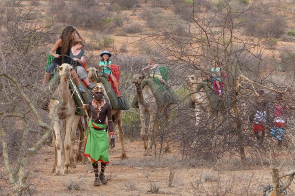 Camel safari to Saasab Fly Camp